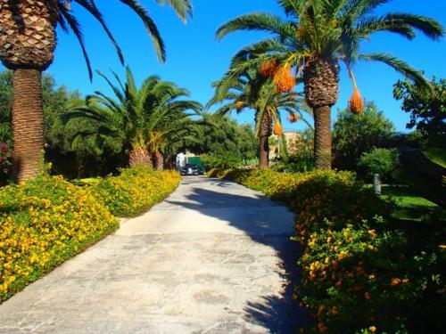 farmhouse wedding venue malta (7)